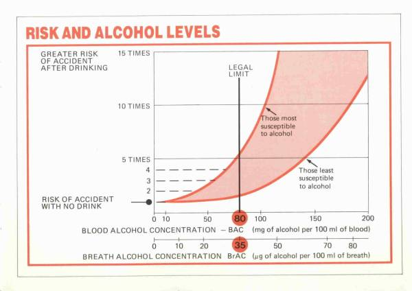 The Facts About Drinking and Driving - Page 3